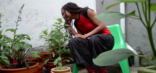 http://home.zuper.com/---2005/20050602_GardenHoe.jpg